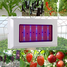 Derlight® 300W Das ganze Spektrum LED Pflanzenlampe für Gewächshaus Pflanze Bluete White Shell IR UV Licht für Zimmerpflanzen Blumen und Gemüse (300W) - 1
