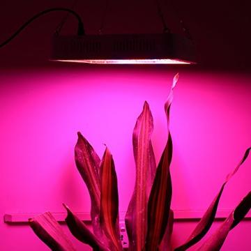Derlight® 400W Hohe Energie Das ganze Spektrum LED Pflanzenlampe für Gewächshaus Pflanze Bluete White Shell IR UV Licht für Zimmerpflanzen Blumen und Gemüse (400W) - 7