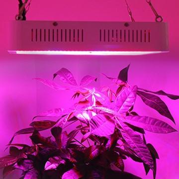 Derlight ® 600W Das ganze Spektrum LED Pflanzenlampe für Gewächshaus Pflanze Bluete White Shell IR UV Licht für Zimmerpflanzen Blumen und Gemüse (600W) - 7