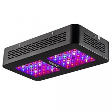 Niello 300W Dual LED