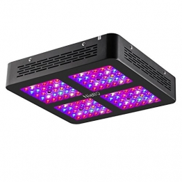Niello 600W Dual LED