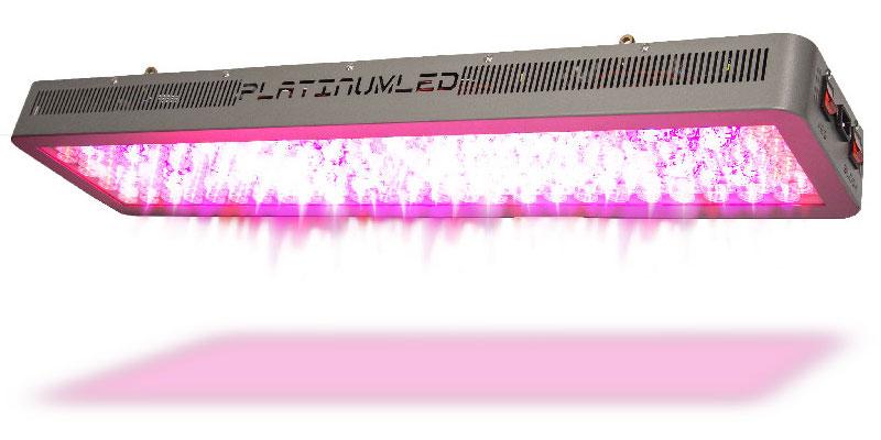 advanced platinum led p600 600 watt 12 band led test. Black Bedroom Furniture Sets. Home Design Ideas