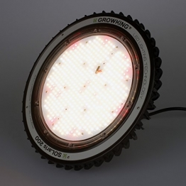 200 Watt Solaris - UFO LED von Growking