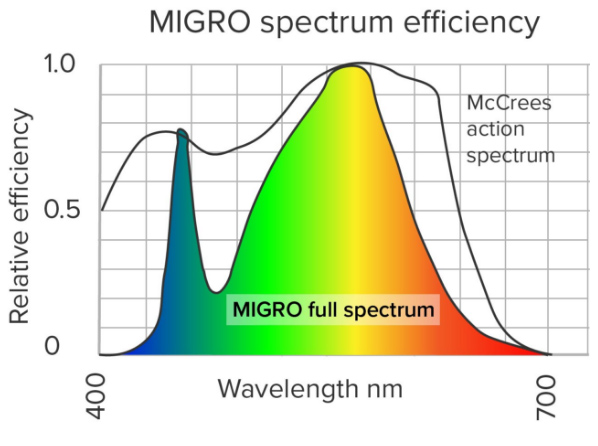 McCree Action Spectrum vs Migro Grow Light